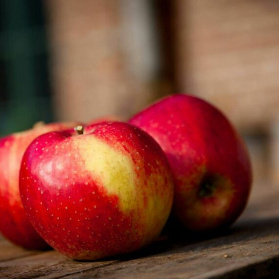 Drei rote Äpfel
