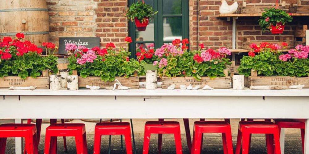 Langer Tisch mit Stühlen und Blumen vor dem Schumacher Hofladen Eingang