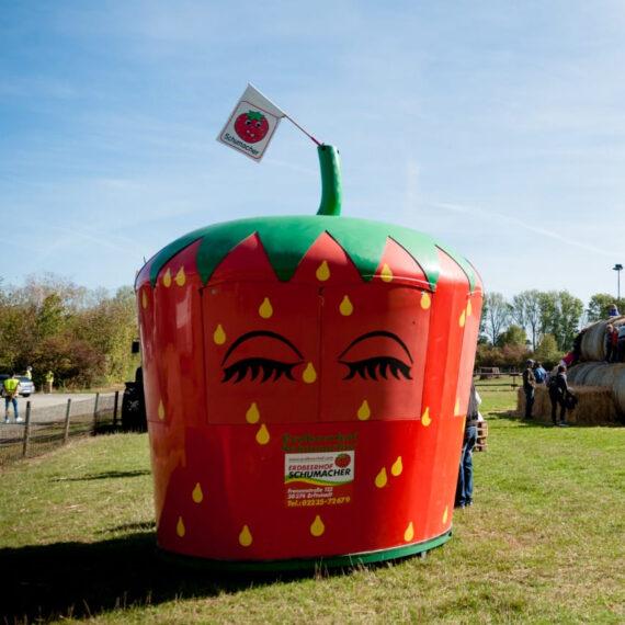 Verkaufsstand Erdbeere