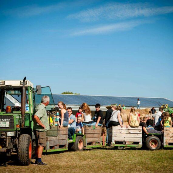 Auf dem apfelfest zieht ein Traktor mehrer Holzanhänger in denen Kinder und Erwachsene eine Rundfahrt über die Felder machen