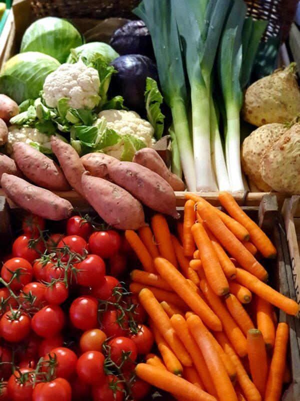Korb mit Gemüse wie Blumenkohl, Möhren, Süsskartoffeln, Tomaten, Porree, Sellerie und Kohl